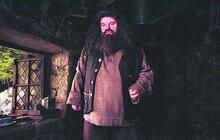 Klíčník Hagrid z filmů  o Harrym Potterovi: Skončil na vozíčku!