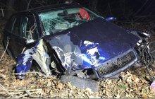 Rozmlátila auto o strom