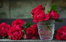 Nelenošte, bavte se! Přeplavte se přes řeku za svitu lampionů v Liberci, nebo se zajděte naladit na jro na Floru Olomouc, kde se prolne krása květin s uměním sklářů. Pokud si budete chtít spíše zalenošit doma, zkuste to s knihou Poslední hodiny.