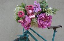 Jak vytvořit kvetoucí tříkolku? Poradíme a designérkou Martinou...