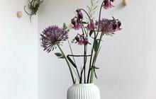Orlíček - kytička našich babiček v interiéru