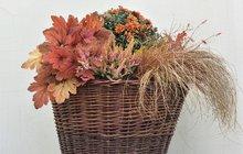 Květinové koše - v odstínech oranžové....