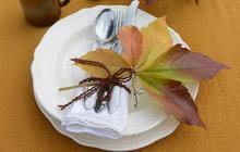 Jak si také můžete zpestřit podzimní stolování? Přinášíme vám zajímavý nápad od designérky Martiny Krumphanslové zM Art studia. Vždyť právě současné roční období nabízí nepřebernou škálu přírodních tónů. Všude kolem nás poletují barevné listy, tak si jich pár chyťte a doneste si je domů. Knedělnímu obědu si pak budete moci prostřít zcela netradičně.