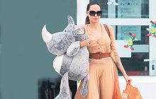 Angelina Jolieová: Plyšák místo manžela?
