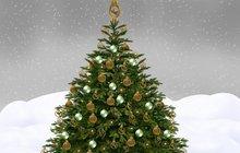 Vánoční stromek k zimním svátkům neodmyslitelně patří a neobejde se bez něj asi žádná domácnost. Může o vás ale také hodně prozradit, záleží na tom, jak ho nazdobíte a které barvy na něm převládají. Jde o netradiční test osobnosti.