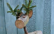 Do kamen snimi, nebo si znich udělat neobvyklou okrasu na zahradu? Zmocněte se několika pěkných dřevěných polínek, nenechte je protentokrát shořet a vytvořte si znich jelena jako poleno! Ať už bude vaše polínko březové, bukové, borovicové nebo dubové, váš jelen bude krasavec vždy! A což teprve děti až ho uvidí, to bude spousta radosti. Nápad pro vás tradičně nachystala Martina Krumphanslová zM ART studia.
