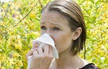 Alergici, jaro je tady! Rady, jak zmírnit smrkání, kýchání a slzení očí