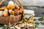 5 tipů, jak si na houbách pochutnat i v zimě. Nejlepší způsoby, jak je uchovat