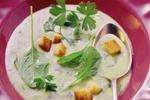 Sýrová krémová polévka