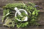 Bylinky v kuchyni: Jak je zpracovat a uchovat, aby byly stále po ruce!
