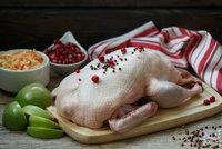 Jak si vybrat svatomartinskou husu? Dejte si pozor na její původ a váhu