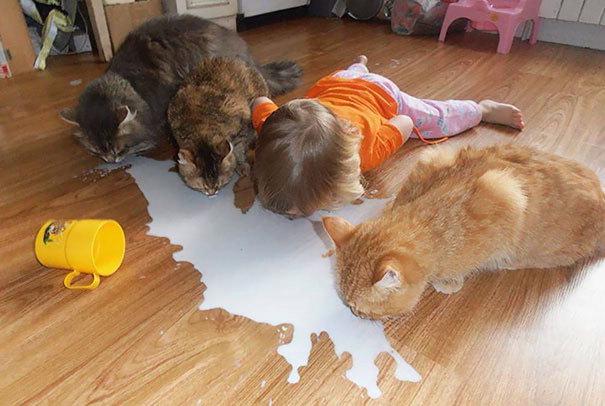 Zvířata mají s dětmi leckdy víc trpělivosti než dospělí