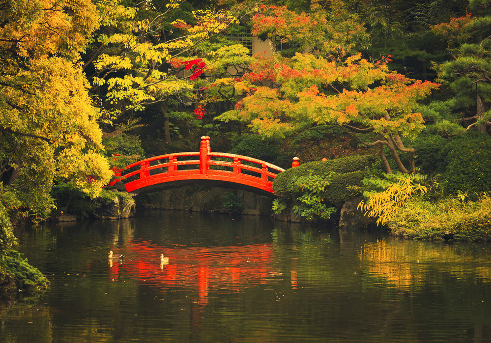 Japonský most