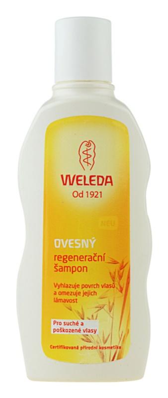 Regenerační šampon pro suché a poškozené vlasy Ovesný 3235d3882bf