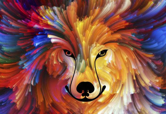 Test osobnosti: Jaké zvíře vidíte? Poznejte skrze obrázek svou povahu!