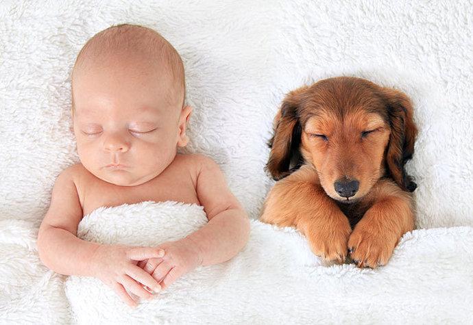 Spánek ve společnosti psů dětem prospívá.