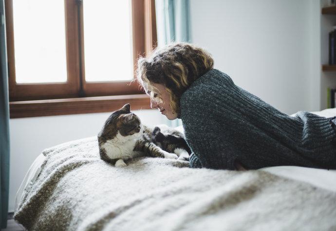 Milujete kočky  A víte 3180f43951