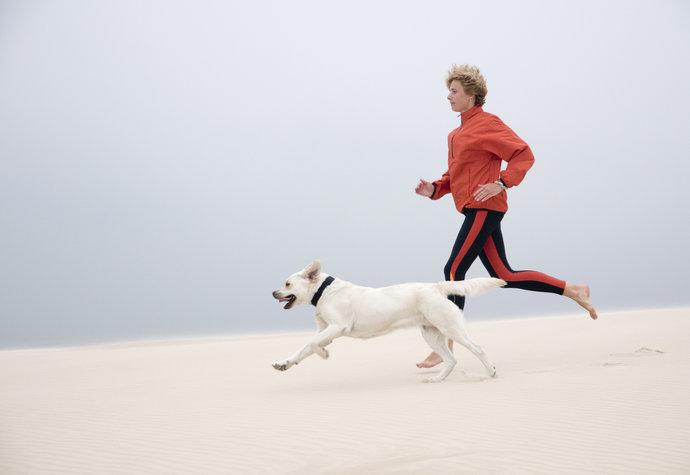 Sportujte se psem a hubněte. Jaké aktivity zvolit?