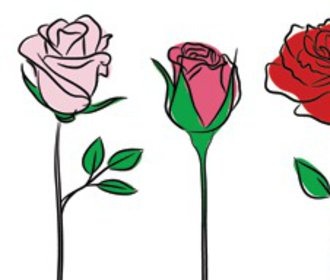 Test osobnosti: Vyberte si růži, prozradí o vás nečekaně mnoho