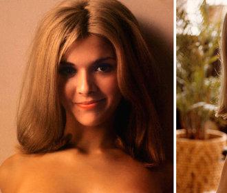 Dříve a nyní: Jak se změnily bývalé kočky z Playboye
