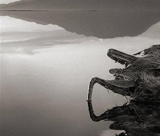 Jezero v Tanzánii udivuje svět, mění zvířata v kámen