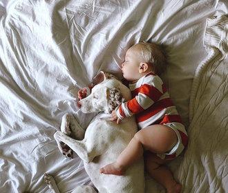 16 důvodů, proč nenechávat děti o samotě s domácími mazlíčky