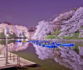 Nejkrásnější rozkvetlá místa na světě. Tady chcete být 1. máje políbena!