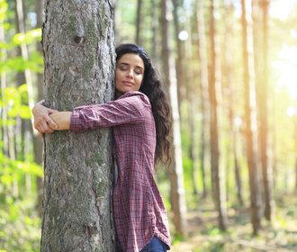 Keltský horoskop stromů: Který je ten váš a co o vás vypovídá?
