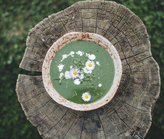 Jarní polévka z medvědího česneku podle The Kitchen Story!