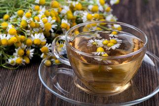 Bylinky ovlivňují účinnost klasických léčiv