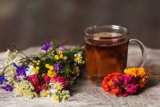 Na každou nemoc je rostlina: Velký přehled bylin a jejich účinků