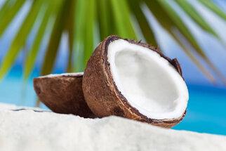 Kokos zahání žízeň a hydratuje, skvěle pečuje o pokožku i vlasy
