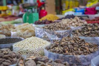 Shii-take, reishi, hlíva a další: S čím vším pomohou léčivé houby?