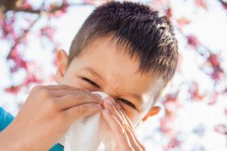 Nejbizarnější typy alergií. Existuje proti nim obrana?