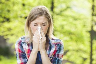 Alergie na pyl může ve výjimečných případech končit i smrtí