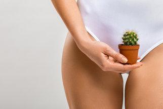 Gynekologické záněty: Dejte si pozor na voňavý toaletní papír, mýdlo i kalhoty