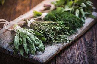 5 bylinek, které skvěle ochutí vaše jídlo a navíc prospívají zdraví