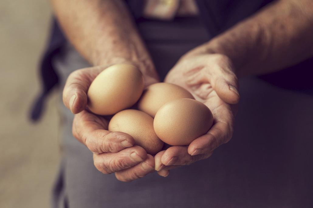 Zbylá vejce se hodí do salátu i do pomazánek