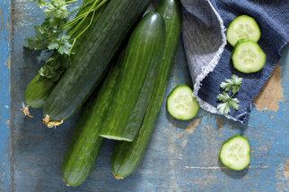 Okurková sezona vrcholí! Vyzkoušejte několik letních receptů!
