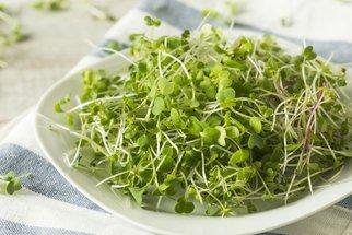 Klíčení semínek: Vypěstujte si doma vitamínovou bombu!