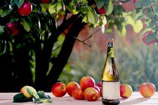 Cider a cidre: Rozdíl mezi nápoji z kvašeného moštu ochutnáte na F.O.O.D. pikniku!