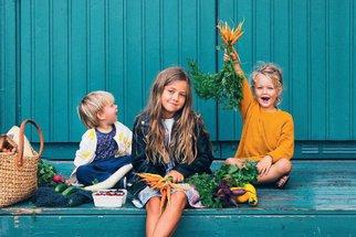 Kuchařka Little Green Kitchen: Barevné recepty bez masa pro celou rodinu