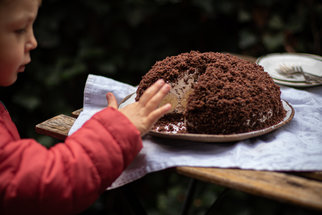 Domácí krtkův dort připravíte levou zadní i bez krabice!