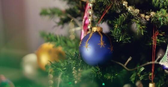 Vánoční stromek jako ničitel wifi spojení.