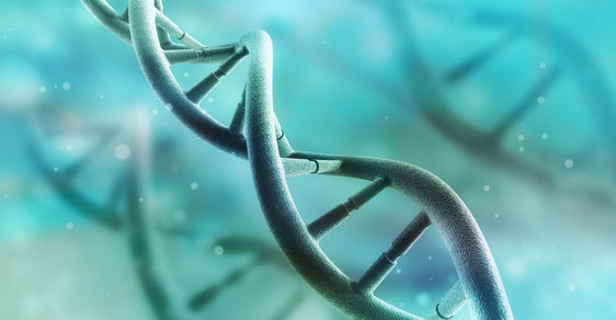 Genetika - ilutrační foto