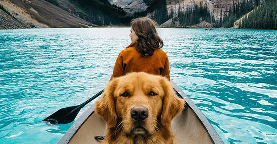 Nejlepší přítel na dobrodružné cesty, nejlepší pes na dokonalé fotky