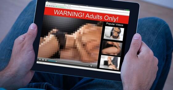 Že patří porno mezi nejvyhledávanější slova loňského roku asi nikoho nepřekvapí