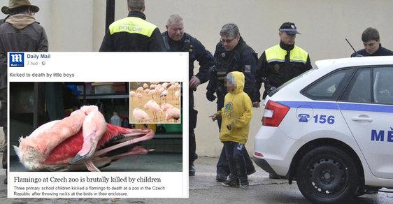Zahraniční média jsou šokována případem z Jihlavy, kde děti utýraly plameňáka