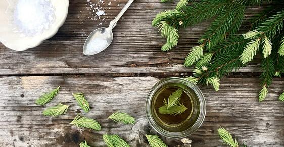 Udělejte si smrkovou sůl nebo smrkový sirup a můžete se cítit jako michelinský šéfkuchař
