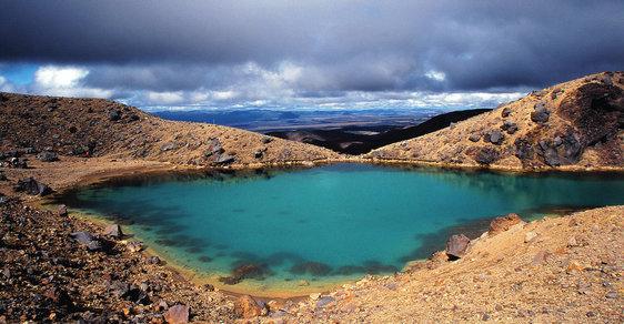 Příroda bez hranic: Na Nový Zéland za velrybami, tučňáky a kousavými lachtany